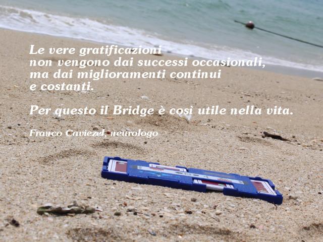 Importanza del Bridge